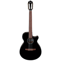 Ibanez AEG50N BKH Nylon Guitar Black High Gloss image