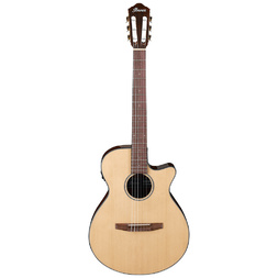 Ibanez AEG50 NNT Nylon Guitar Natural High Gloss image