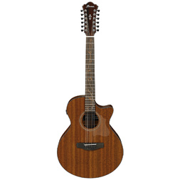 Ibanez AE2912 LGS Acoustic Guitar 12 String Natural Low Gloss image