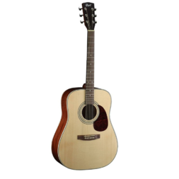 Cort Earth 70 Dreadnought Acoustic Open Pore image