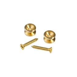 Planet Waves Solid Brass End Pins - Brass (Pair) image