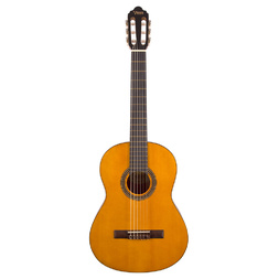 Valencia Series 200 Classical Guitar (Natural) image